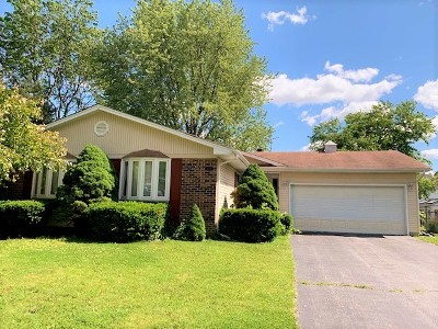 Hoffman Estates Single Family Home For Sale: 1375 Michael Court