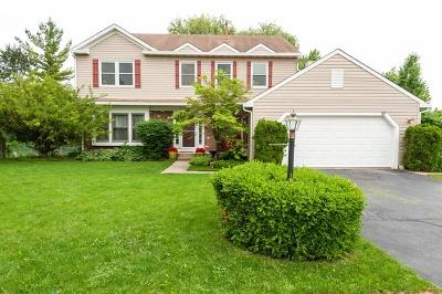 Streamwood Single Family Home New: 27 Magnolia Drive