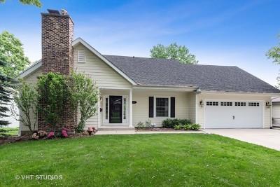 Libertyville Single Family Home New: 947 Bartlett Terrace