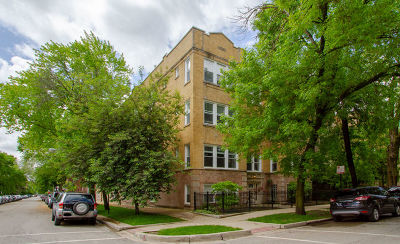 Condo/Townhouse New: 2839 West Palmer Street #1