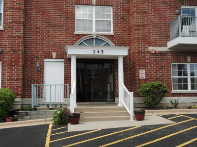 Palatine Condo/Townhouse For Sale: 245 West Johnson Street #206