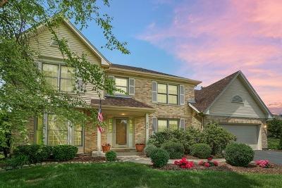 Geneva Single Family Home New: 860 Wood Avenue