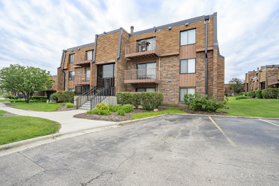 Schaumburg Condo/Townhouse New: 631 Derry Court #1B