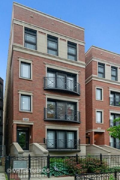 Condo/Townhouse New: 3541 North Wilton Avenue #2