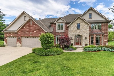 Roselle Single Family Home For Sale: 55 Plum Grove Road