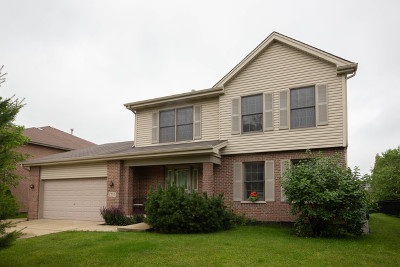 Lemont Single Family Home For Sale: 1233 Drover Drive