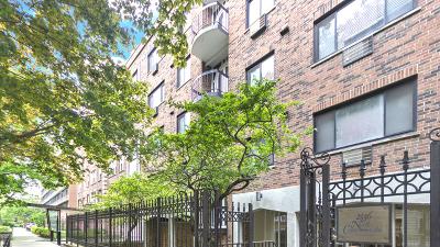 Condo/Townhouse New: 2336 North Commonwealth Avenue #211