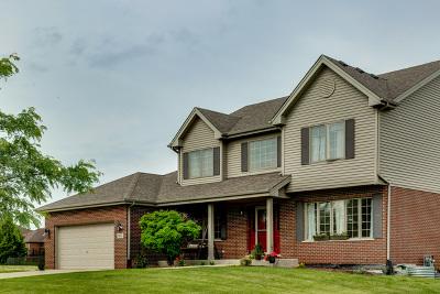 Homer Glen Single Family Home For Sale: 14042 Churchill Drive