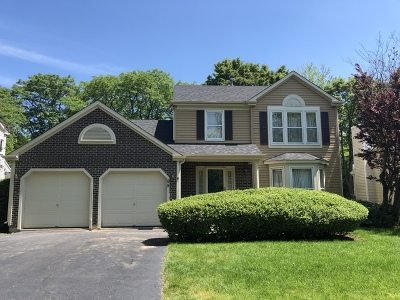 Vernon Hills Single Family Home New: 95 North Fiore Parkway