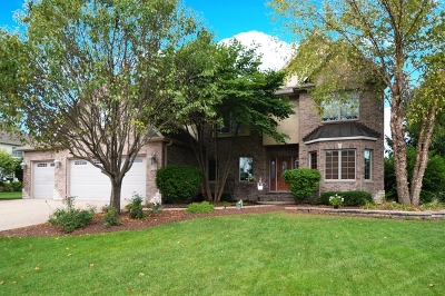 Shorewood Single Family Home For Sale: 21240 South Redwood Lane