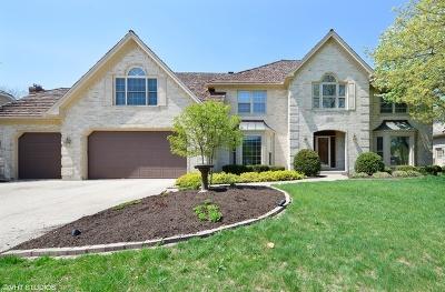 Naperville IL Single Family Home New: $589,000
