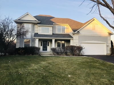 Vernon Hills Single Family Home For Sale: 1791 Stanwich Road