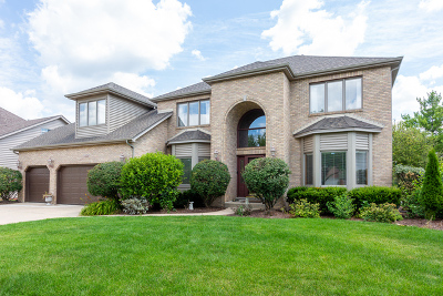 Naperville Single Family Home New: 3424 Redwing Drive