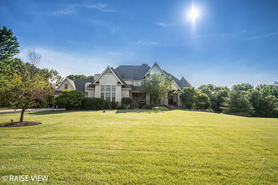 Yorkville Single Family Home For Sale: 8226 Shadow Creek Lane