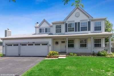 Du Page County Single Family Home New: 797 Longmeadow Drive