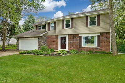 Naperville Single Family Home New: 1452 Encina Drive