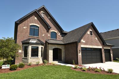 Lemont Single Family Home New: 12123 Fairmont Lane