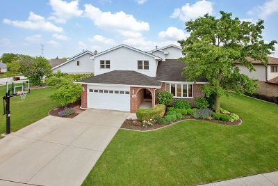 Tinley Park Single Family Home For Sale: 17625 Lilac Lane