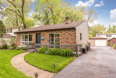 Glen Ellyn Single Family Home For Sale: 166 South Park Boulevard