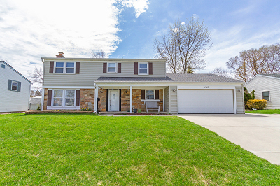 Schaumburg Single Family Home For Sale: 1317 Colwyn Drive