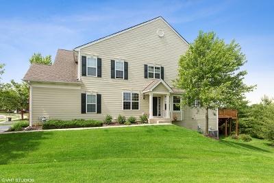 Kane County Condo/Townhouse For Sale: 1197 Falcon Ridge Drive