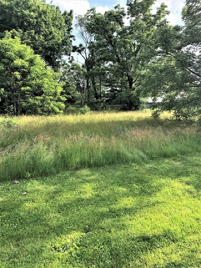 Mc Henry County Residential Lots & Land New: Lot 2 West Flanders Road
