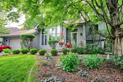 Bolingbrook Single Family Home For Sale: 722 Feather Sound Drive