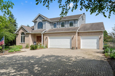 Yorkville Single Family Home For Sale: 341 Emily Court