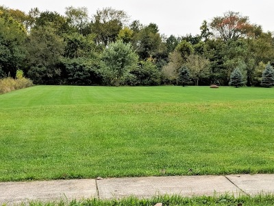 Elwood Residential Lots & Land For Sale: 21151 South Wooded Cove Drive