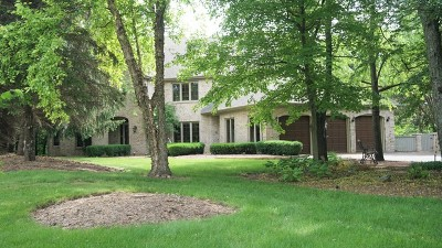 Yorkville Single Family Home For Sale: 21 Canyon Court