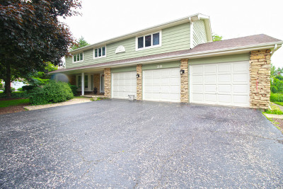 Hawthorn Woods Single Family Home New: 38 Carlisle Road