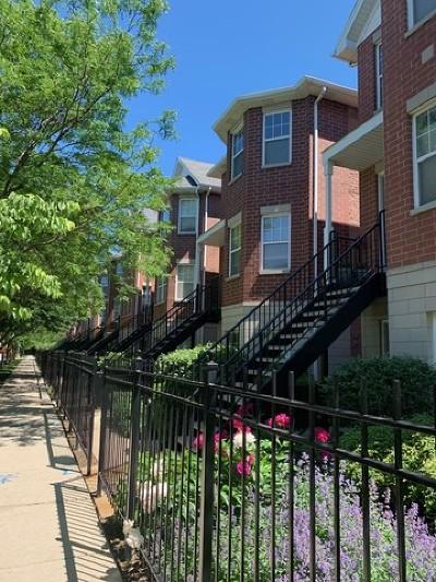 Condo/Townhouse New: 651 West Elm Street #B