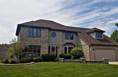 Oak Forest Single Family Home New: 6236 Jillann Drive