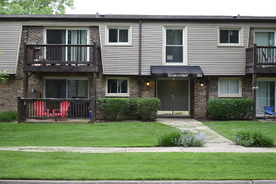 Palatine Condo/Townhouse For Sale: 322 North Carter Street #203