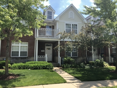Schaumburg Condo/Townhouse For Sale: 1402 Brownstone Place