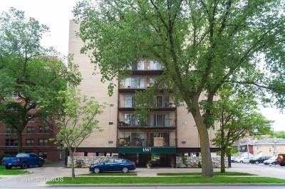 Evanston Condo/Townhouse For Sale: 1567 Ridge Avenue #806
