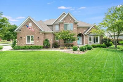Naperville Single Family Home New: 5423 Switch Grass Lane