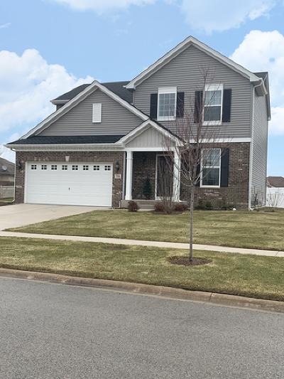 Minooka Single Family Home For Sale: 704 Longridge Trail