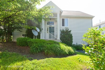 Round Lake Condo/Townhouse Contingent: 704 South Rosehall Lane
