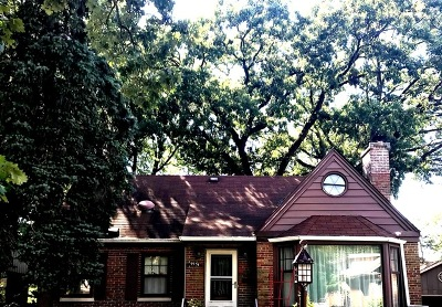 Oak Lawn Single Family Home For Sale: 9534 South 50th Court