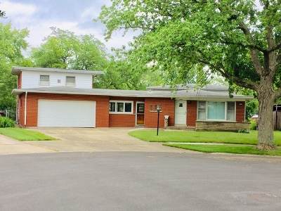 Cook County Single Family Home New: 130 Pleasant Drive