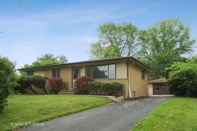 Cook County Single Family Home New: 703 East Dogwood Lane