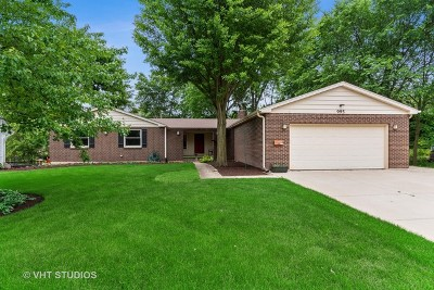 Naperville Single Family Home New: 995 Prairie Avenue