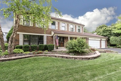 Hoffman Estates Single Family Home New: 3790 Anjou Lane