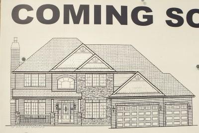 Mokena Single Family Home For Sale: 20138 Golden Oak Lane