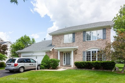 Bolingbrook Single Family Home New: 12 Callery Court