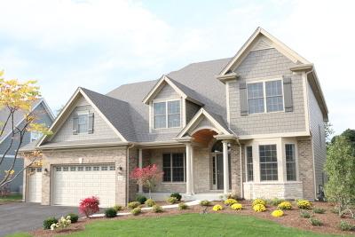 Geneva Single Family Home New: 3436 Blazing Star Court