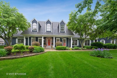 Elgin Single Family Home New: 10n843 Williamsburg Drive
