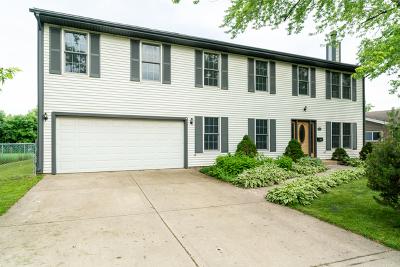 Schaumburg Single Family Home New: 513 Dartmouth Lane