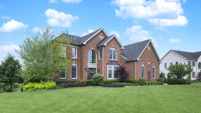 Hawthorn Woods Single Family Home New: 66 Tournament Drive North